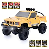 RGT RC Crawlers RTR 1/24 Scale 4wd Off Road Monster Truck Rock Crawler 4x4 Mini RC Car with Lights (Yellow) (Color: Yellow)