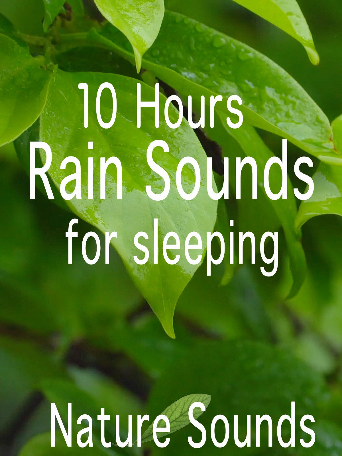 10 Hours Rain Sounds for sleeping