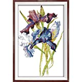 CaptainCrafts Hot New DIY Art Cross Stitch Kits Patterns Needlecrafts Counted Embroidery Kit - iris Flower (Stamped) (Color: STAMPED)