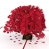 Lovepop Japanese Maple Pop Up Card, 3D Card, Tree Card, Nature Card, Foliage Card, Birthday Card (Tamaño: 1 Pack)
