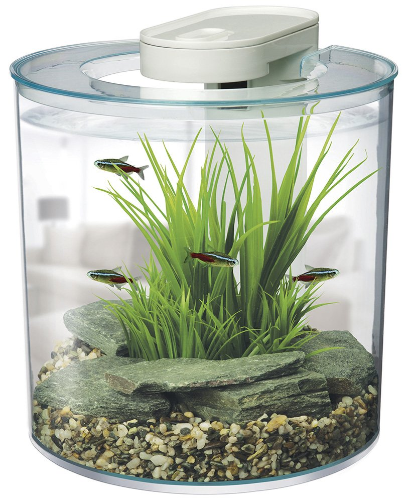 Fish aquarium price in bangalore - Buy Hagen Marina 360 Degree Aquarium Starter Kit Online At Low Prices In India Amazon In