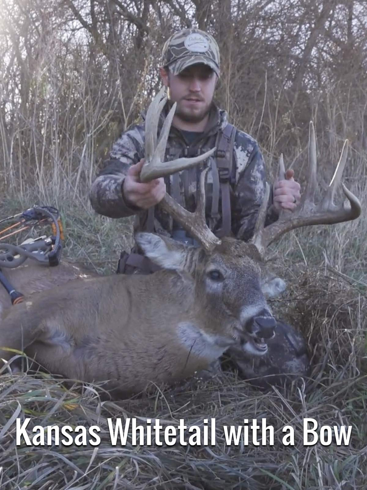 Kansas Whitetail with a Bow