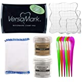 Tsukineko Full-Size VersaMark Pigment Inkpad, 3-Inch by 2-Inch Clear, Inkadinkado Embossing Magic, Ranger Gold & Silver Embossing Powder, 3X Acrylic Stamp Blocks, 6X Craft Scoops (Color: Gold)