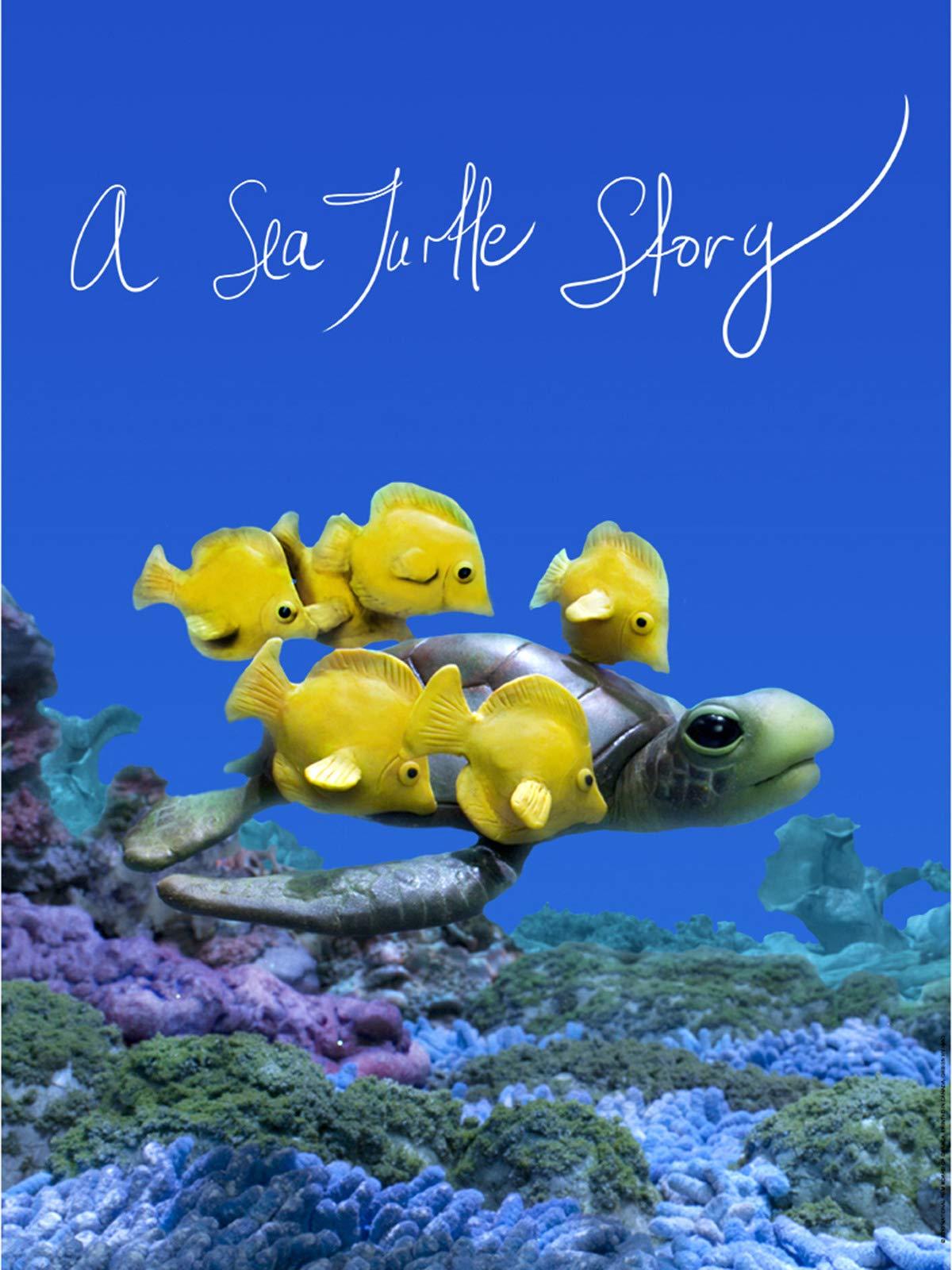 A Sea Turtle Story on Amazon Prime Video UK