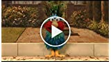 Elmo's World: Springtime Fun