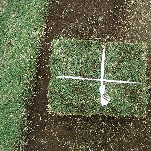 つくばグリーン(野芝)(張り芝用) つくば産 2平米(0.6坪分)