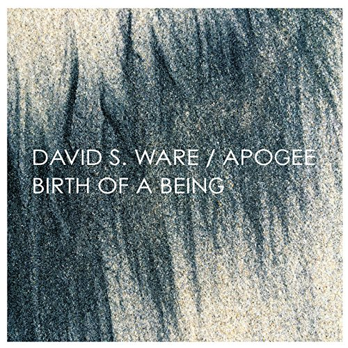 Apogee / Birth of a Being
