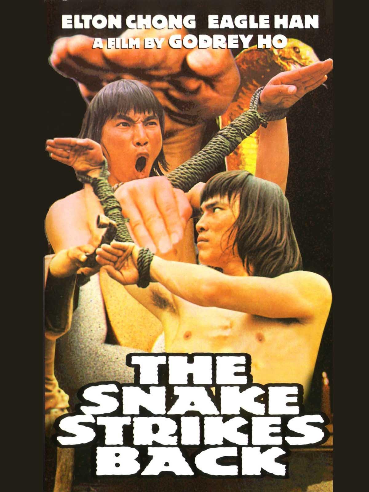 The Snake Strikes Back
