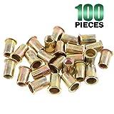 Keadic 100Pcs M10 Metric Zinc Plated Carbon Steel Rivet Nut Flat Head Threaded Insert Nutsert Kit (M10) (Tamaño: M10)