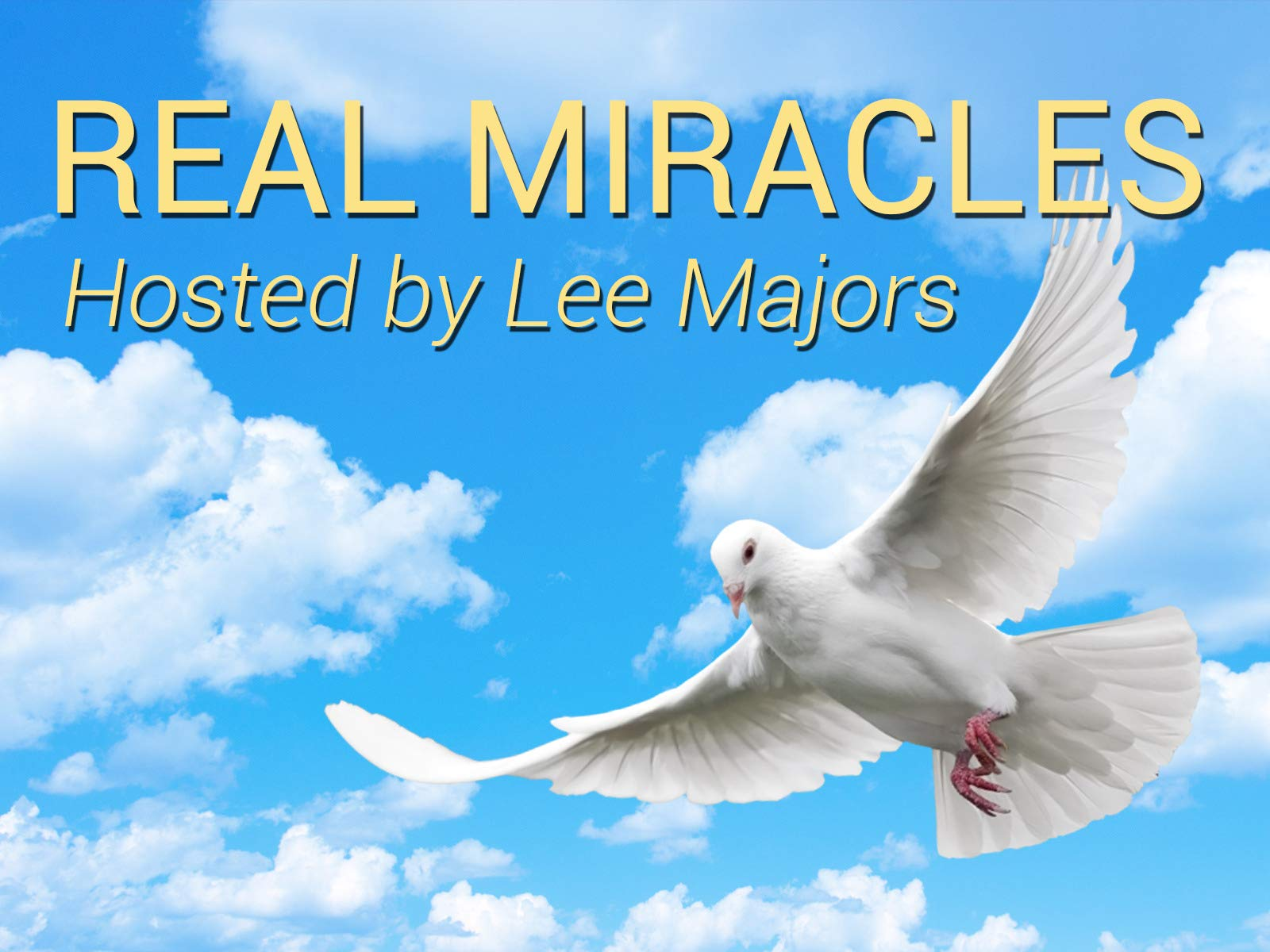 Real Miracles - Season 1