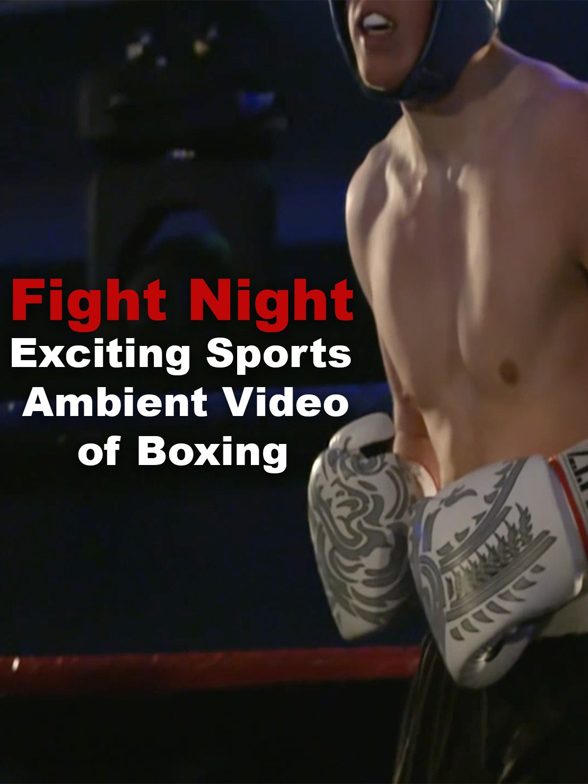 Fight Night Exciting Sports Ambient Video of Boxing