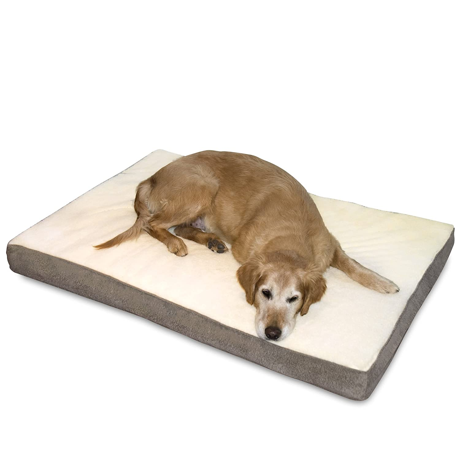 Large Breed Dog Bed Reviews