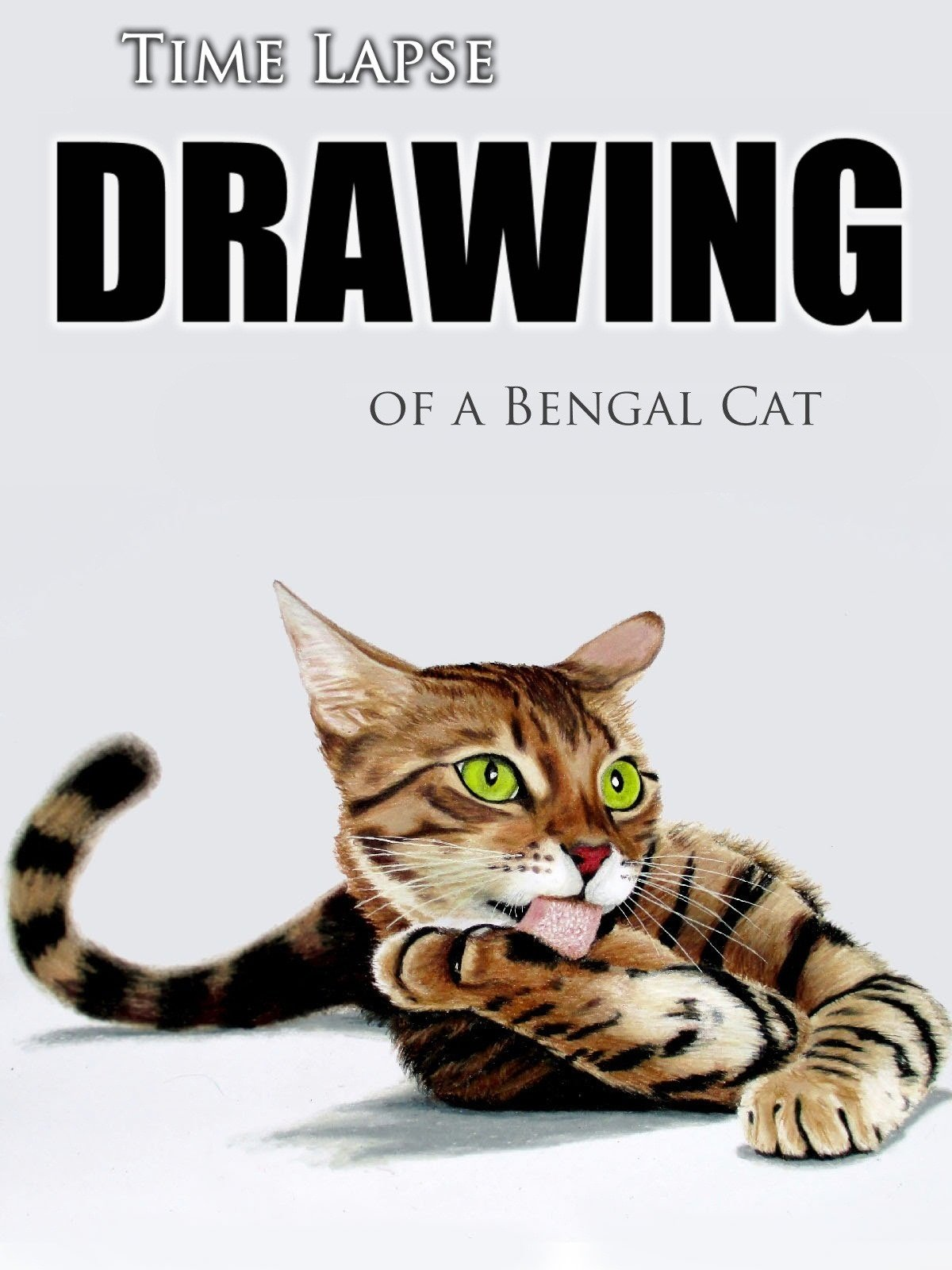 Clip: Time Lapse Drawing of a Bengal Cat