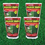 4 X Canada Green Grass Seed, 500 Grams