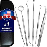 Dental Tools, 6 Pack Teeth Cleaning Tools Stainless Steel Tartar Remover Plaque Scraper Tooth Pick Hygiene Set with Mouth Mirror, Tweezer Kit for Dentist, Family Oral Care, Dogs - With Leather Case (Color: Silver Dental Tools)