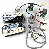 FidgetFidget ProBucker Alnico Classic Zebra Pickups with Pro Wiring Harness Pots/w 3 Way