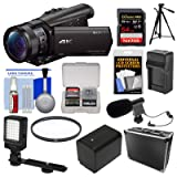 Sony Handycam FDR-AX100 Wi-Fi 4K HD Video Camera Camcorder with 64GB Card + Case + LED Light + Battery/Charger + Mic + Tripod + Filter Kit (Color: Black)