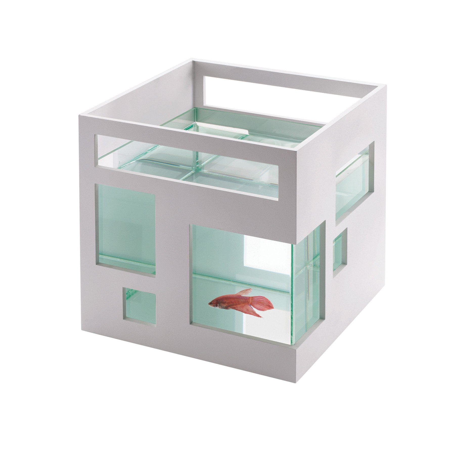 Buy Mini Goldfish Aquarium Now!
