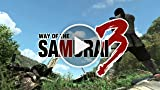 Classic Game Room - WAY OF THE SAMURAI 3 Review