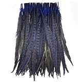 KOLIGHT Set of 100pcs Natural Dyed Pheasant Tails Feathers 12-14 inch DIY Decoration (Blue) (Color: Blue)