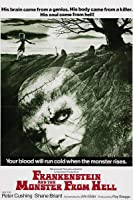 Frankenstein and the Monster from Hell [HD]
