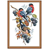 Joy Sunday 11CT Stamped Cross Stitch Kits Cross-Stitch Red Bellies Magpies and Blackberries Sewing Patterns Embriodery Kit 17''x23'' (Color: Stamped kit,red-billed)