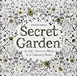 img - for Secret Garden: An Inky Treasure Hunt and Coloring Book book / textbook / text book