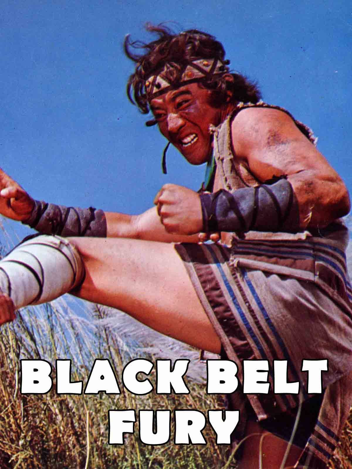 Black Belt Fury