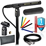 Audio-Technica AT875R Line/Gradient Shotgun Condenser Microphone with Windscreen, Protective Pouch, 10-foot XLR Cable, Cable Ties and Extended Warranty (Color: Black)