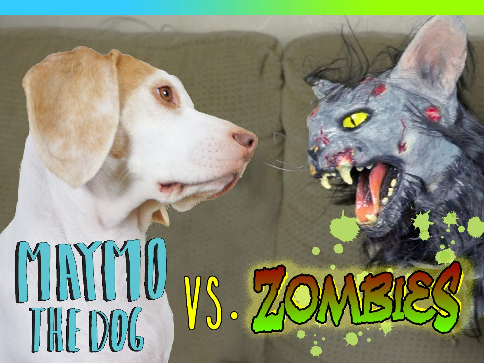 Clip: Maymo The Dog vs. Zombies - Season 1
