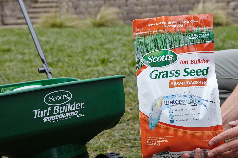 Scotts Turf Builder Bermudagrass Seed