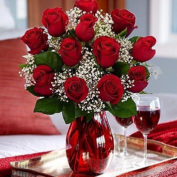 Amazon.com : One Dozen Red Roses : Fresh Cut Format Rose Flowers ...