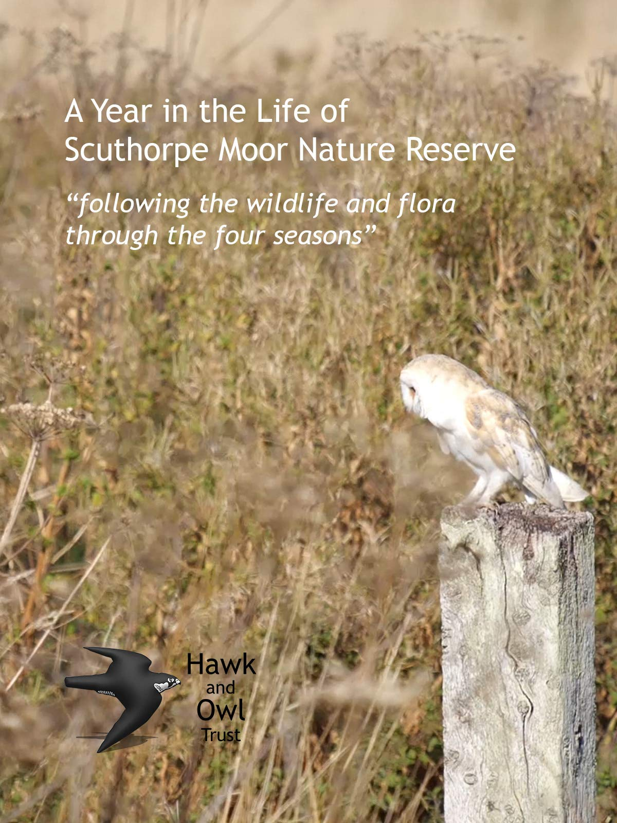 A Year in the Life of Sculthorpe Moor Nature Reserve