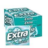 Extra Polar Ice Sugarfree Gum, 10 packs