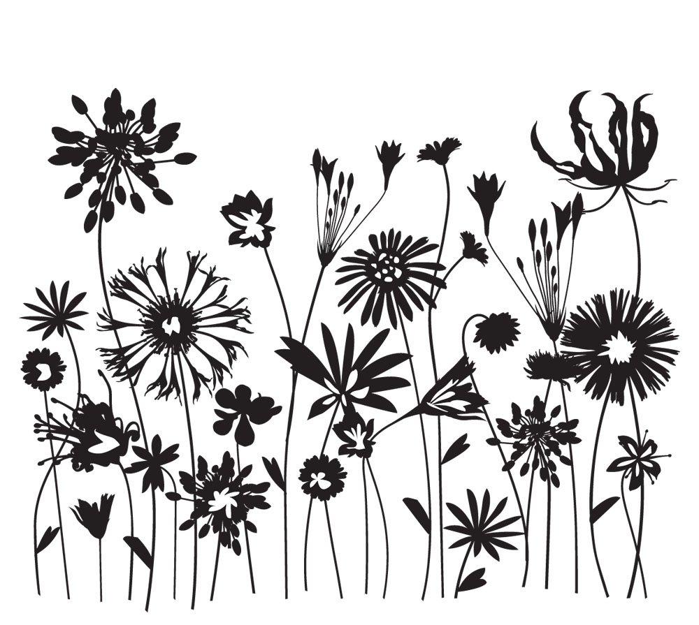 Flower Drawings In Black And White | Joy Studio Design ...