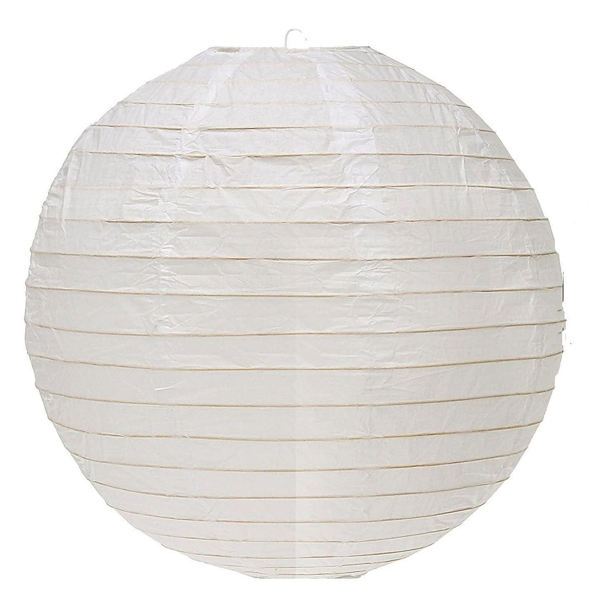 "Everyday PLNT-10-FBA Round Paper Lantern (10 Pack), 10"", White"