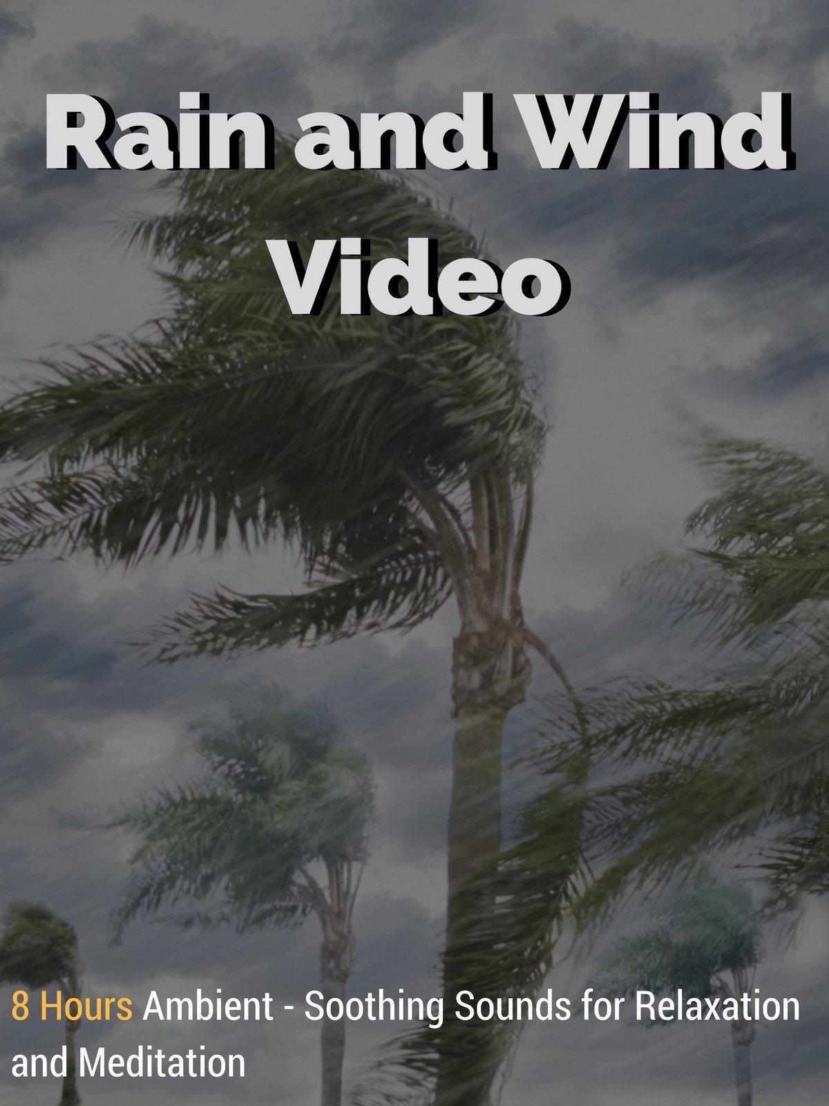 Rain and Wind Video