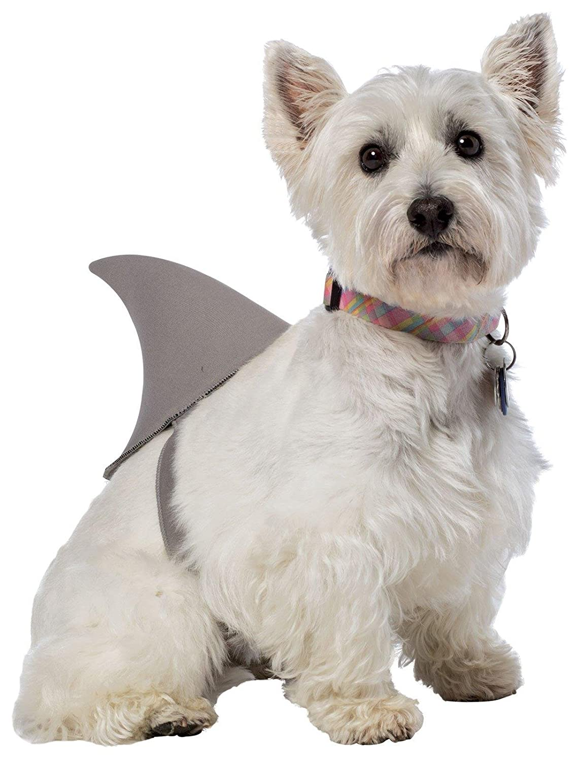 Shark Fin Dog Costume Rasta Imposta Shark Fin Dog