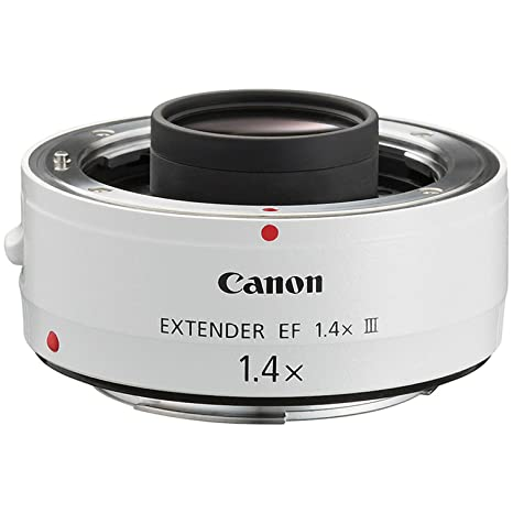 Canon 1.4x EF Extender III at amazon