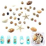 1 BOX Ocean Style Decorations Natural DIY Mini Conch Shells Starfish Sea Beach Ornaments 3D Nail Gems Accessories Manicure Nail Art Decoration Tools