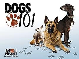 Dogs 101 Season 1