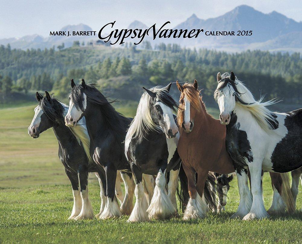 Gypsy Vanner Calendar
