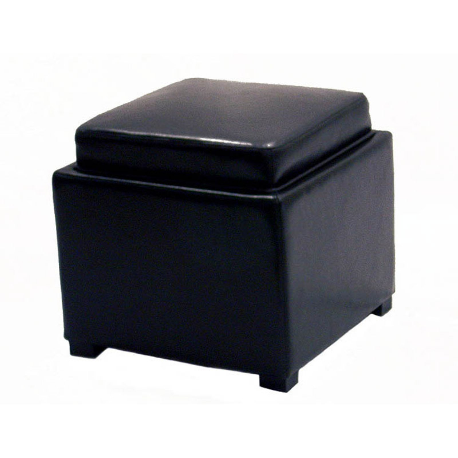 Baxton Studio Full Leather Square Storage Ottoman With
