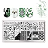 Summer Fruit Nail Art Stamping Template Tropical Punch Pattern Rectangle Image Plate Stamping Polish Needed BP-A04 (Color: BP-A04)
