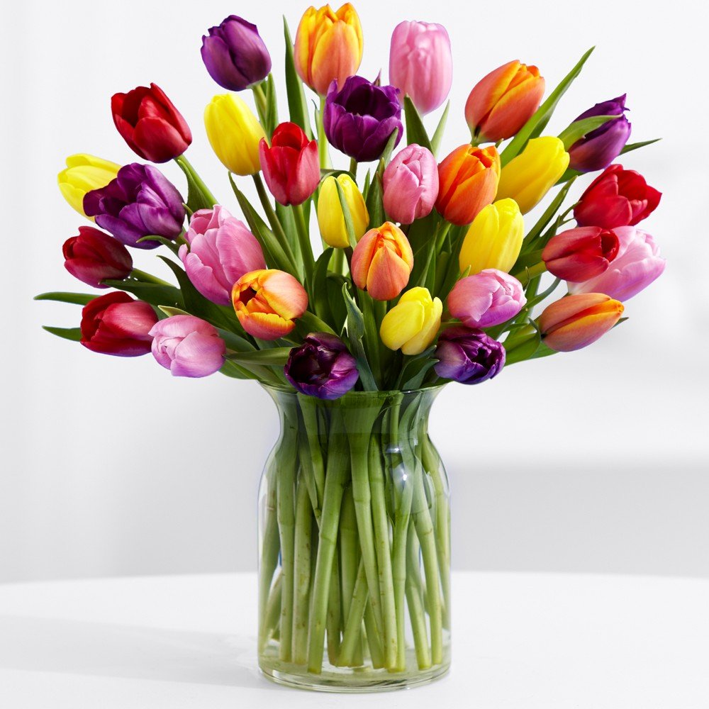 ProFlowers - Free Shipping - 30 Multi-Colored Tulips (with FREE glass vase) - Flowers