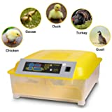 Benlet Egg Incubators Hatcher, 48 Egg Hatching Incubator for Chicken Duck Goose Quail Turkey Tuttle Birds Fertilized Poultry Eggs Hatcher Auto-Turning [US Store] (Color: Yellow)