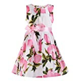 PrinceSasa Fubin Kid Girl Floral Cotton Dresses Summer Clothes Black Height 45''/3-5 Years (Color: Pink Lemon2, Tamaño: Height 45''/4-5 years)