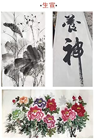 Megrez Chinese Watercolor Practice Chinese Japanese Calligraphy Writing Sumi Drawing Xuan Rice Paper Thickening without Grids 100 Sheets/Set - 50 x 100 cm (19.68 x 39.37 inch), Sheng Xuan (Color: Sheng Xuan, Tamaño: 50 x 100 cm (19.68 x 39.37 inch))