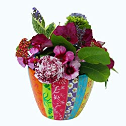 colourful plant pot