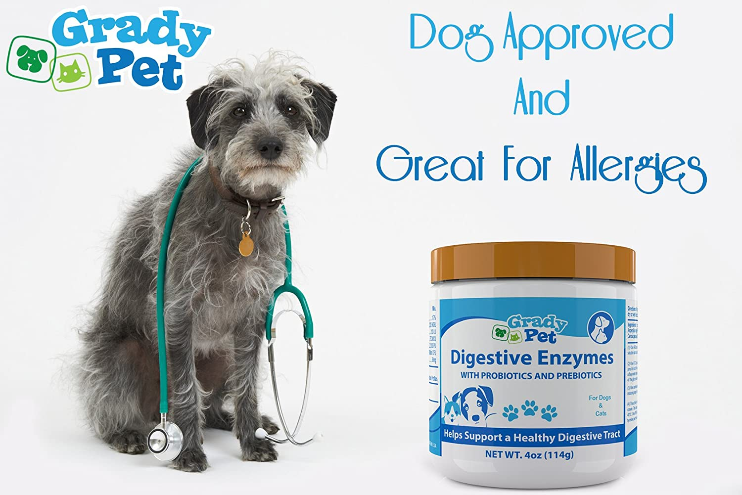 Cool image about enzymes for dogs - it is cool